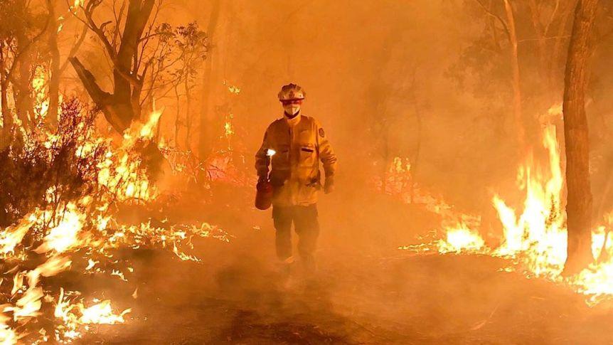 Australia's environment in 2019