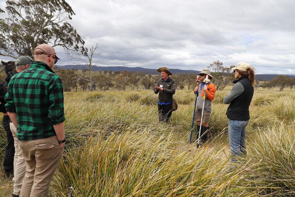 Extinct grass re-found