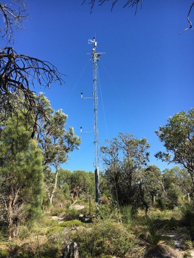 Gingin_CoastalHeathWoodland_RPS_30March2017_FluxTower800