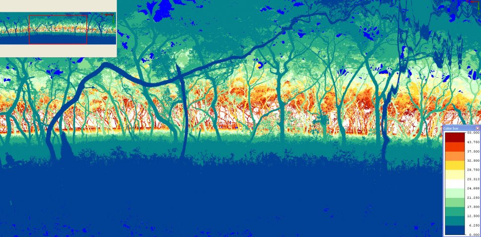 mangroves4_range_credit TERN