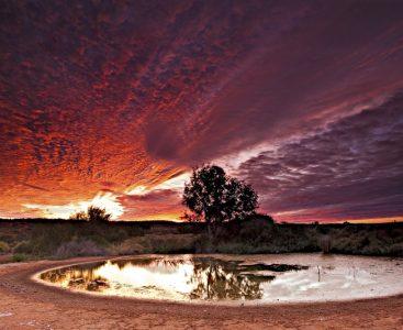 Ethabuka Spring sunset